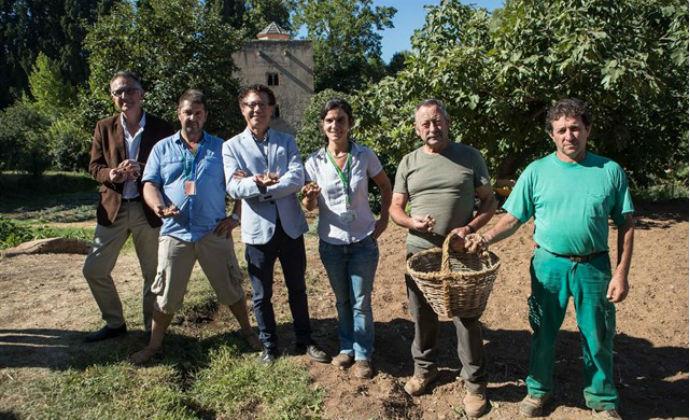El Azafrán de La Mancha vuelve a La Alhambra con un bonito proyecto